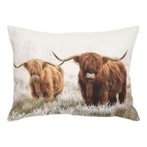 Schottische Hochland Rinder Kissen