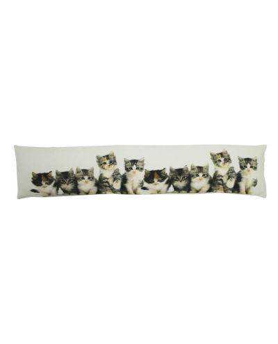 Kissen Kätzchen